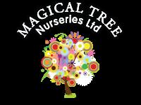 Image Of Magical Tree Nurseries Ltd