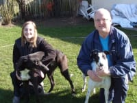 A & R Dog Walking Service