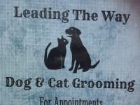 Dog Cat Grooming Near Borehamwood Reviews Yell
