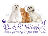 Dog Cat Grooming In Maidstone Reviews Yell