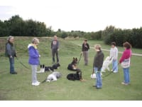 Dog Trainers in Husbands Bosworth | Reviews - Yell