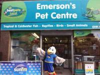 Pet Shops Near Sunderland Tyne And Wear Reviews Yell
