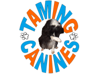 Dog Trainers in Dunchurch | Reviews - Yell