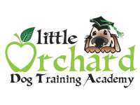 Dog Training Academy