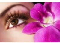 72f9113e0e2 Eyelash Extensions in England   Reviews - Yell