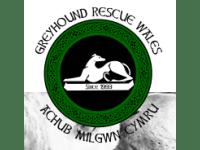 Greyhound Rescue Wales