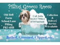 Pilling Groom Room, Preston | Dog & Cat Grooming - Yell