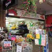 Pet Shops Near Merry Hill Shopping Centre Reviews Yell