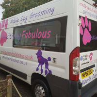 Dog Spa And Grooming Services In Oakland Dog Spa Pet Grooming Business Dog Grooming Salons