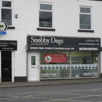 Microchipping Service Near Stockport Reviews Yell