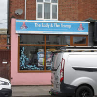 Dog Cat Grooming Near Quedgeley Reviews Yell