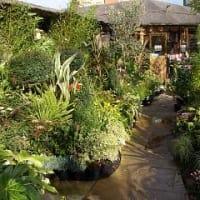 Image of Boma Garden Centre