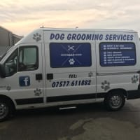Dog Cat Grooming In Garstang Reviews Yell