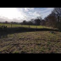 Dave The Handyman, Taunton | Handyman Services - Yell