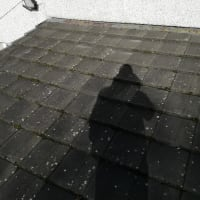 Great Western Roofing Glasgow Roofing Services Yell