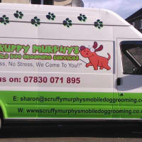 Pet grooming in pathhead reviews yell image of scruffy murphys mobile dog grooming services solutioingenieria Images