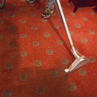Image 16 Of Piranha Carpet Cleaning Services