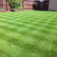 Image 3 of Total Lawncare