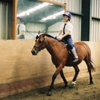 Fort Widley Equestrian Centre Portsmouth Riding Schools