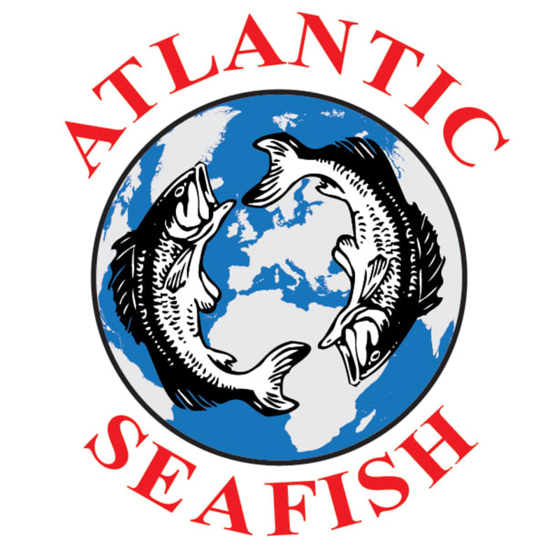 Image result for Atlantic Seafish