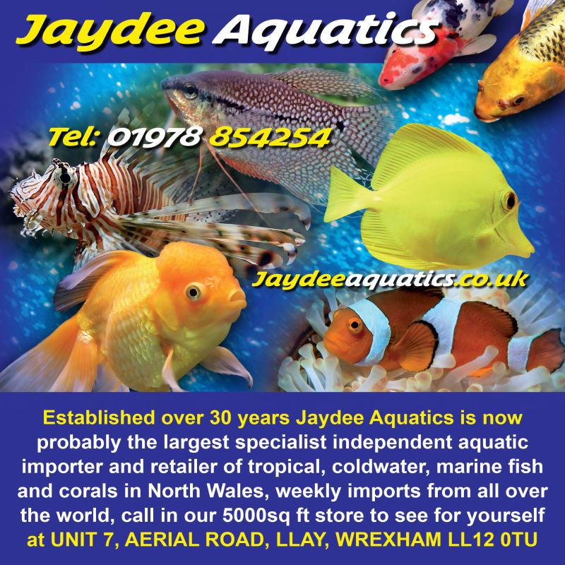 Jaydee Aquatics, Wrexham | Tropical Fish - Yell