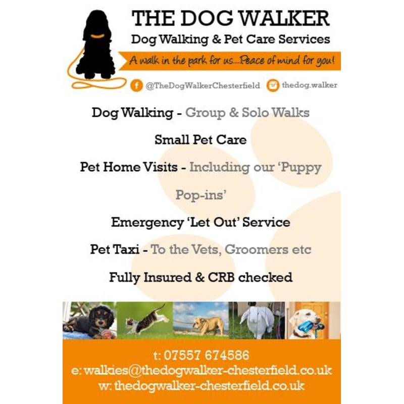 The Dog Walker Chesterfield Chesterfield Dog Walking Yell