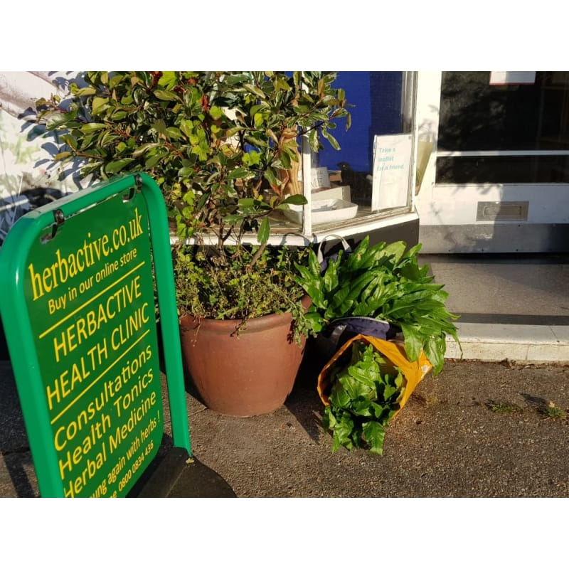 Herbactive Health, New Milton | Herbalists - Yell