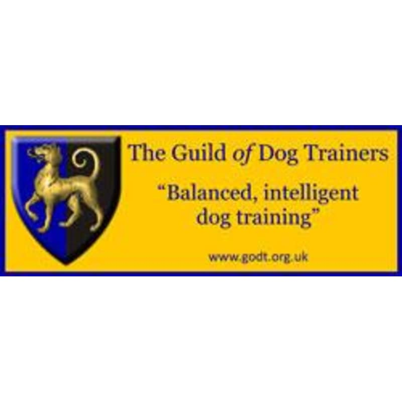 SIT Dog Training, Doncaster | Dog Trainers - Yell