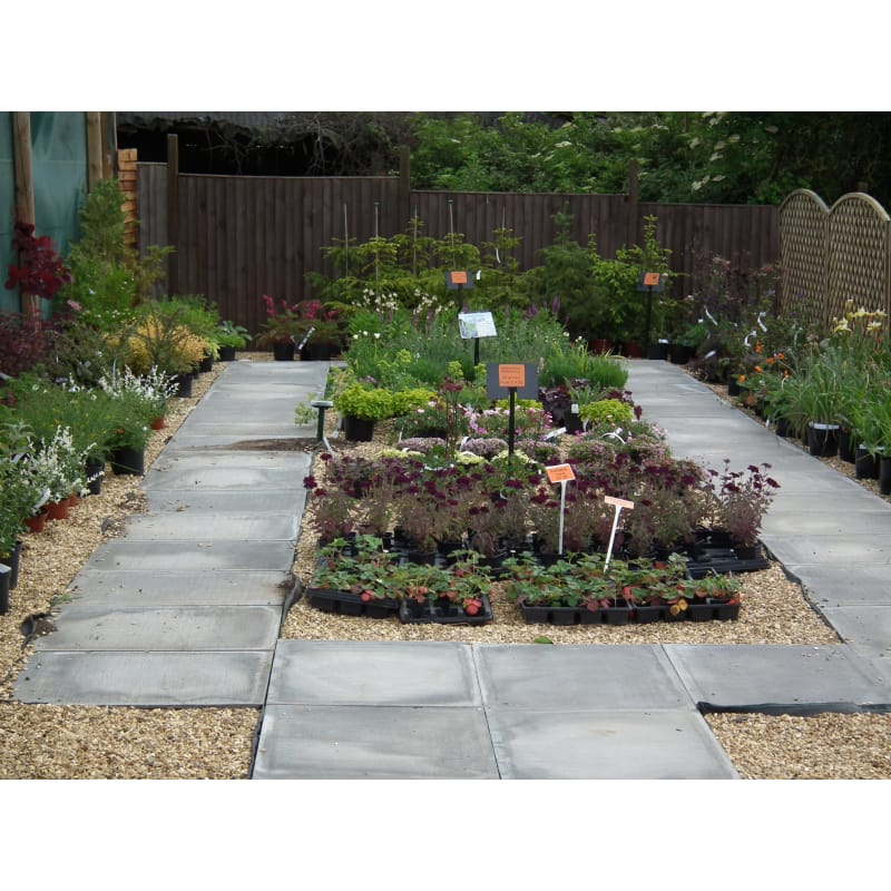 Yardley Hastings Garden Centre Northampton Garden Centres Yell
