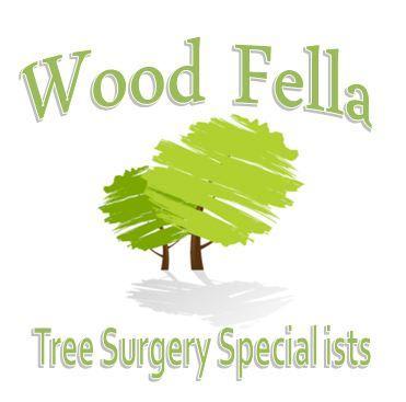 The Wood Fella - Professional Tree Surgery & Log Sales | Ty Newydd Ffordd Y Blaenau, Mold CH7 4NS | +44 7779 860915
